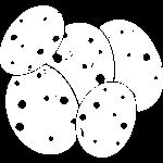 potato_white_square-01